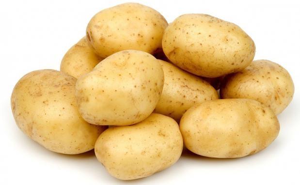 Семенной картофель «Гала»