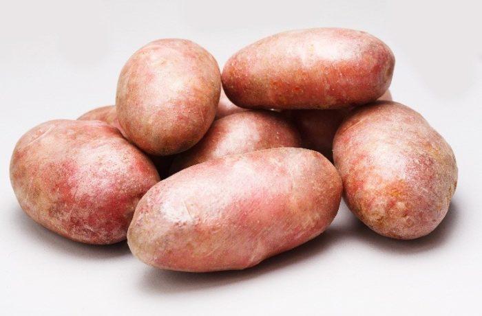 Семенной картофель «Ред Скарлетт»