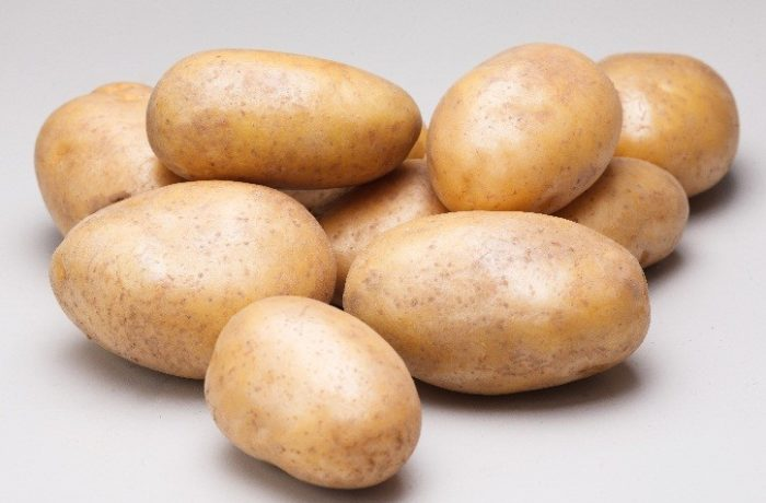Семенной картофель «УДАЧА»