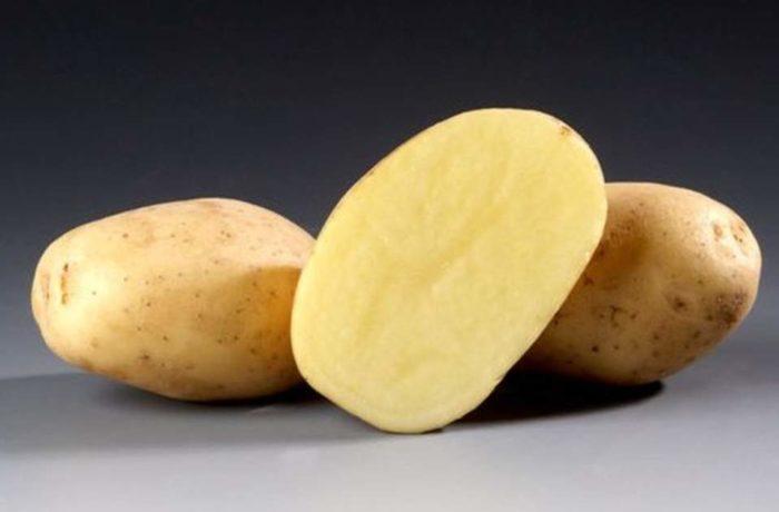Семенной картофель «Рамос»