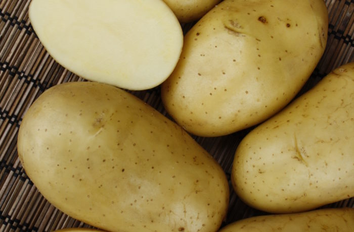 Семенной картофель «Инноватор»
