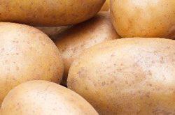 Удача Картофель